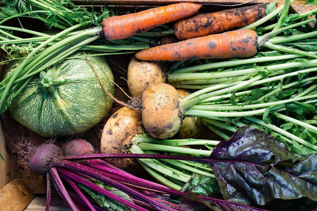 Verschillende groenten